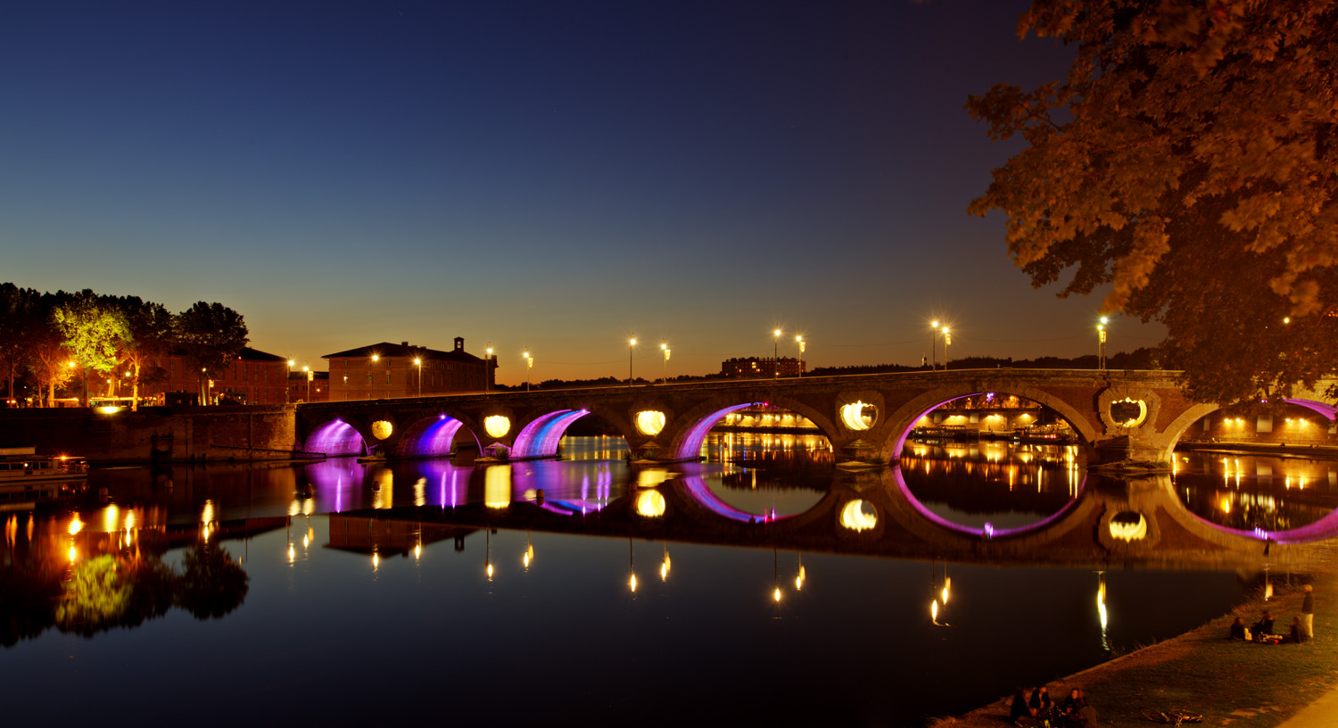 Toulouse pont neuf sat 31